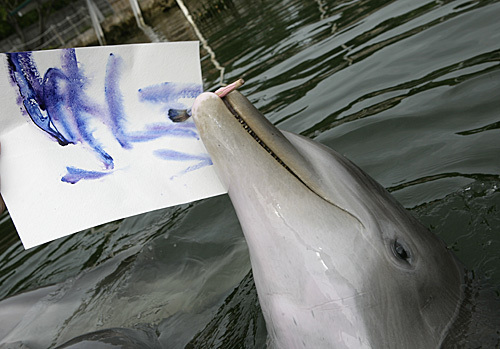 Painting_dolphin_07