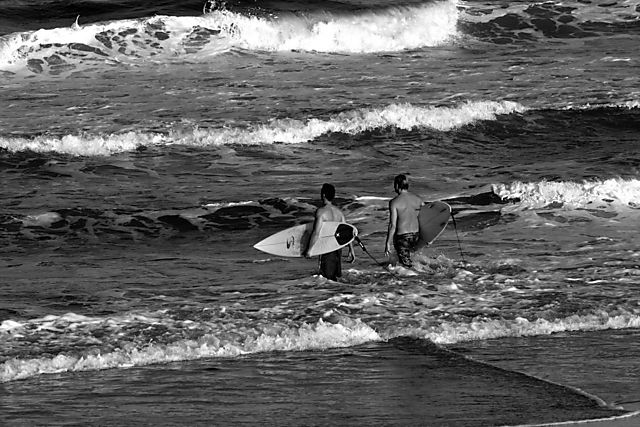 New_Surfing 141bw